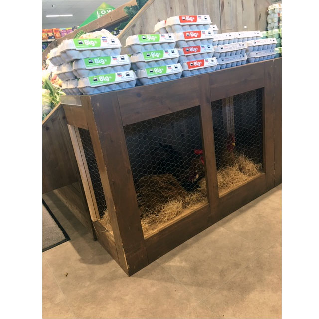 Chicken Coop Display